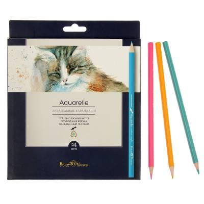 Акварельные карандаши Aquarelle, 24 цвета BrunoVisconti