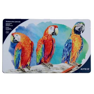 Карандаши акварельные 36цв Kite с кисточкой гриф 4мм, ударопрочные, м/п K18-1054 Kite