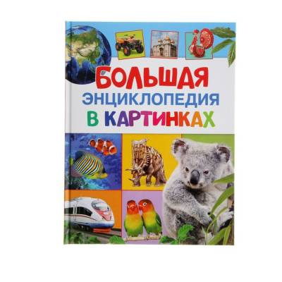 Большая энциклопедия в картинках Росмэн