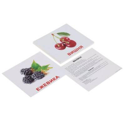 Обучающие карточки «Ягоды» Вундеркинд с пеленок