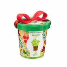 Горшок Базилик зеленый Happy Plant