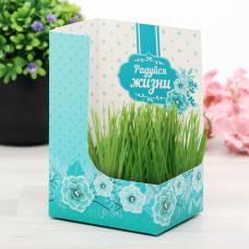 Открытка с растущей травой