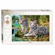 Пазл Art Collection - Сколько тигров?, 2000 элементов Step Puzzle
