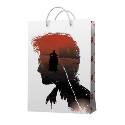 Harry Potter. Пакет подарочный малый (Гарри-профиль), 180*227*100 мм НД плэй / ND PLAY