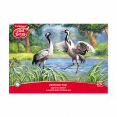 Альбом для рисования ArtBerry - Экзотические птицы Erich Krause