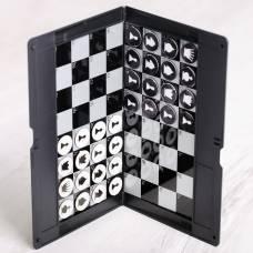 Дорожные шашки