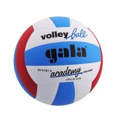 Волейбольный мяч Academy, 20 см, р. 5 Gala