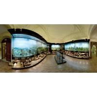 Тимирязевский биологический музей